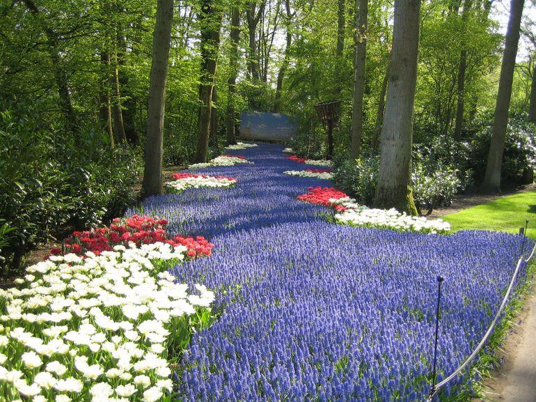 Keukenhof Gardens Netherlands Worlds Beautiful Places